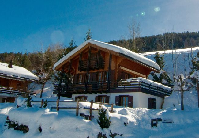 Chalet à Haute-Nendaz - Chalet Lisa, ski-in/out, accessible by car