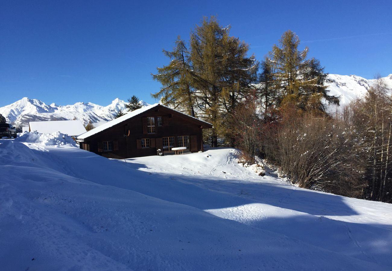 Pierre Blanche chalet Nendaz 4 Vallées rental